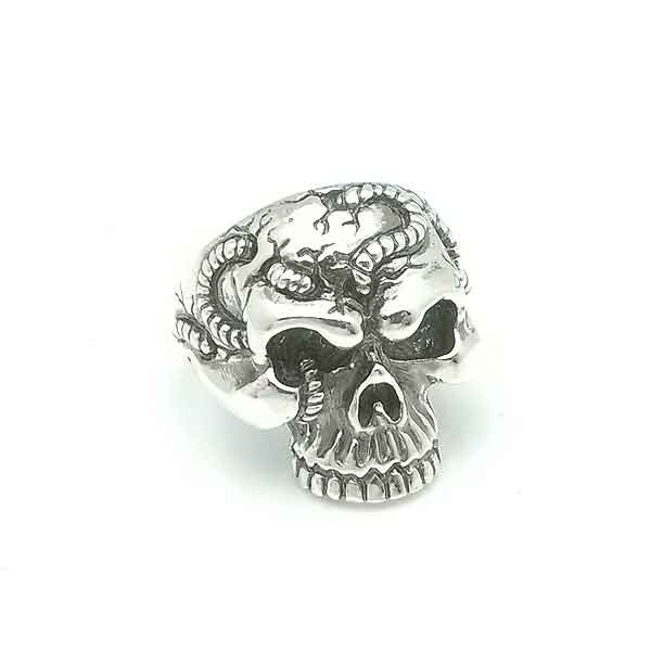 Skull ring worms