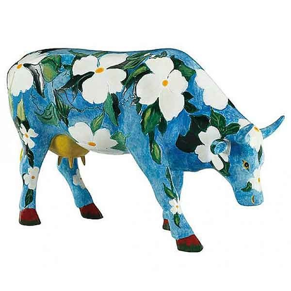 Cow Cawalina Dogwood